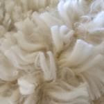 How does fiber diameter affect fleece weight and density?