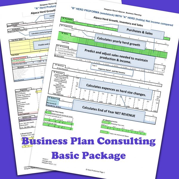 BasicBusinessplan