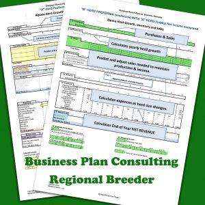 Regional_alpaca_-breeder_general_BPlanA