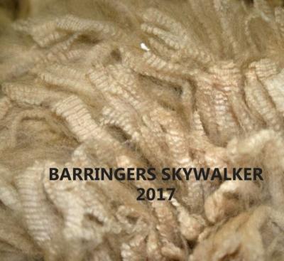 SKYWALKER2017FLEECEBWS